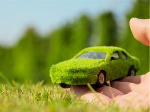 Conducerea ecologica