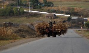 Conducerea masinii in mediul rural
